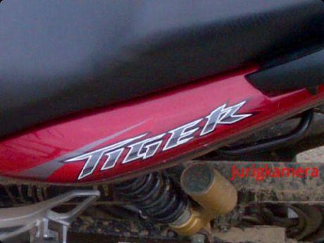 Honda Tiger